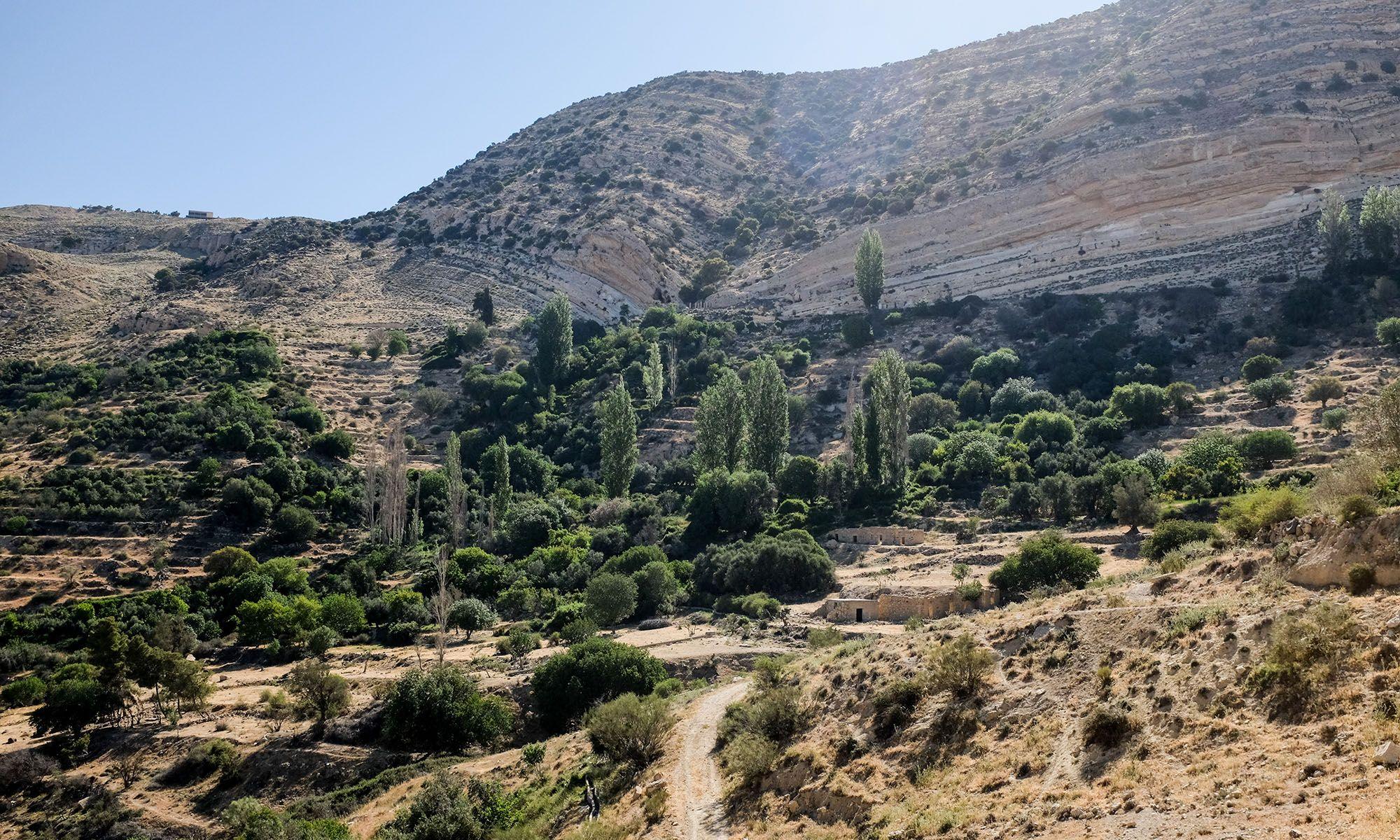 Jordanië Dana Natuurpark