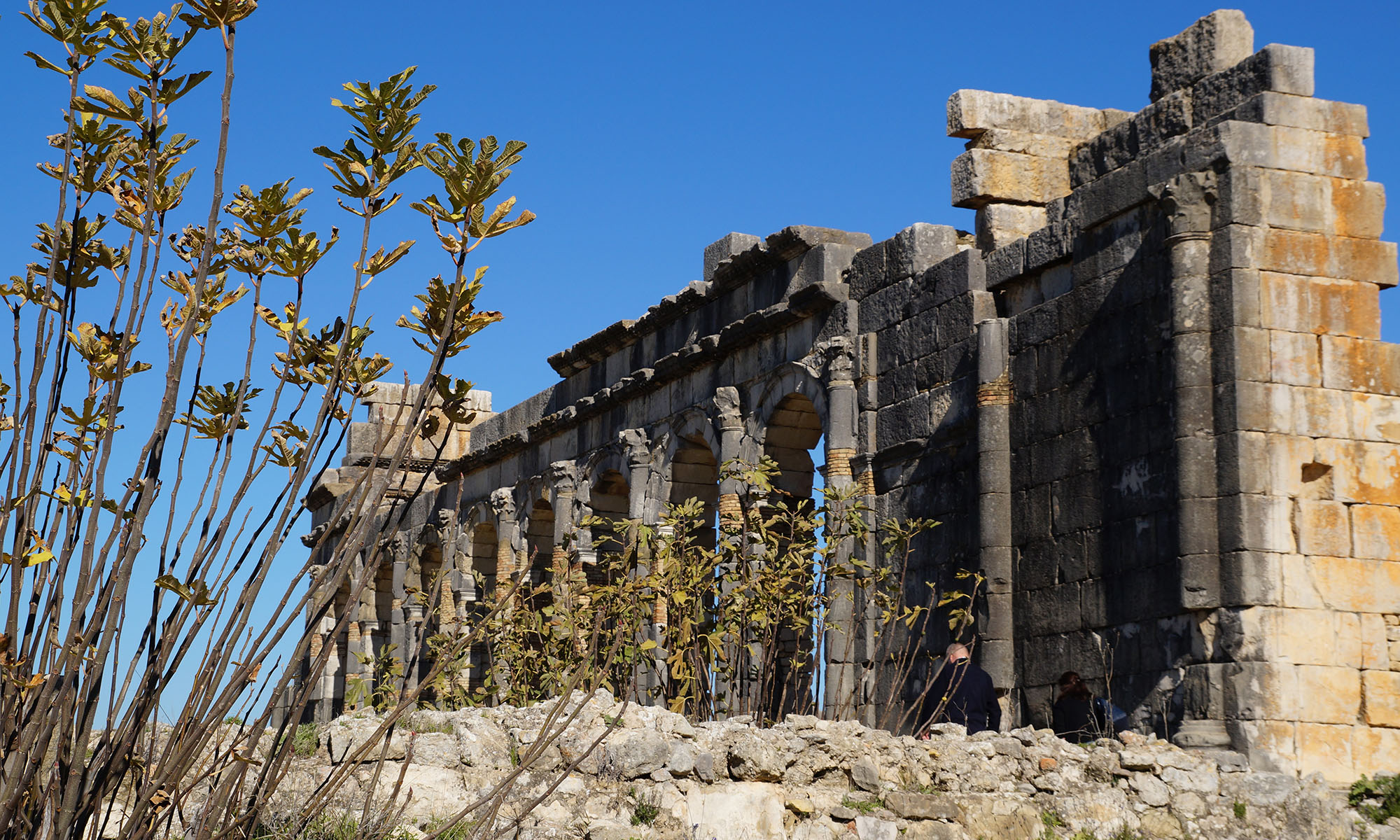 Marokko Meknes ruïnes Volubilis