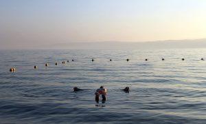 Jordanië Dode Zee Drijven