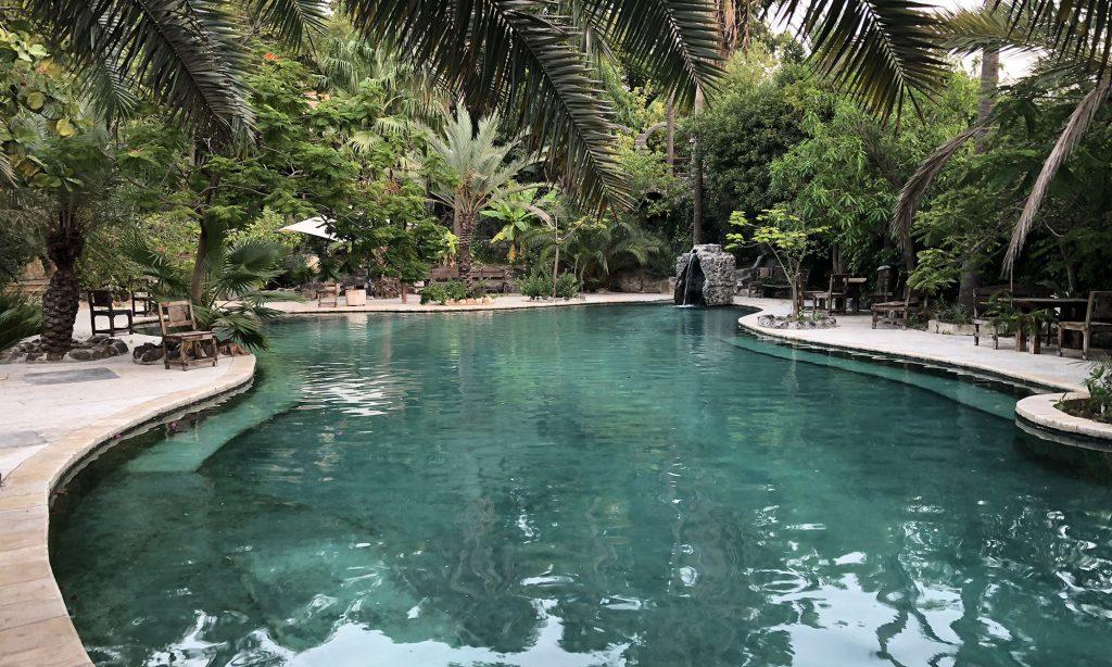 De groene tuin en het natuurlijke zwembad van Samara Chalets in El Himma