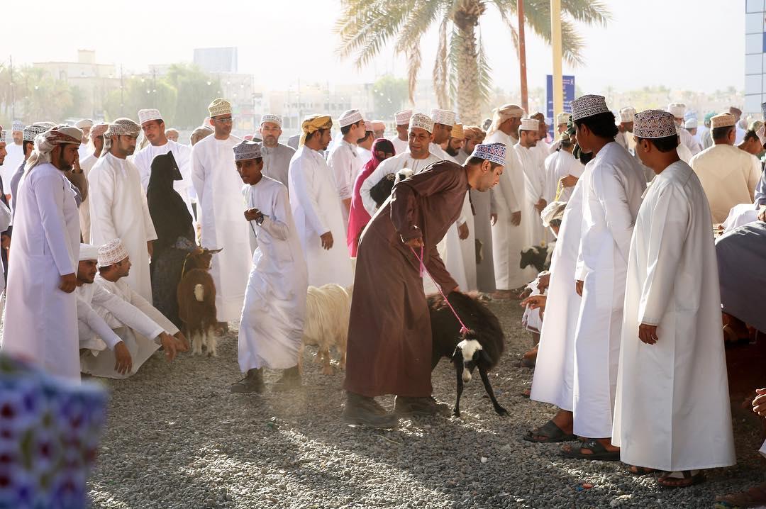 Midden-Oosten veiliger dan op vakantie in eigen land!