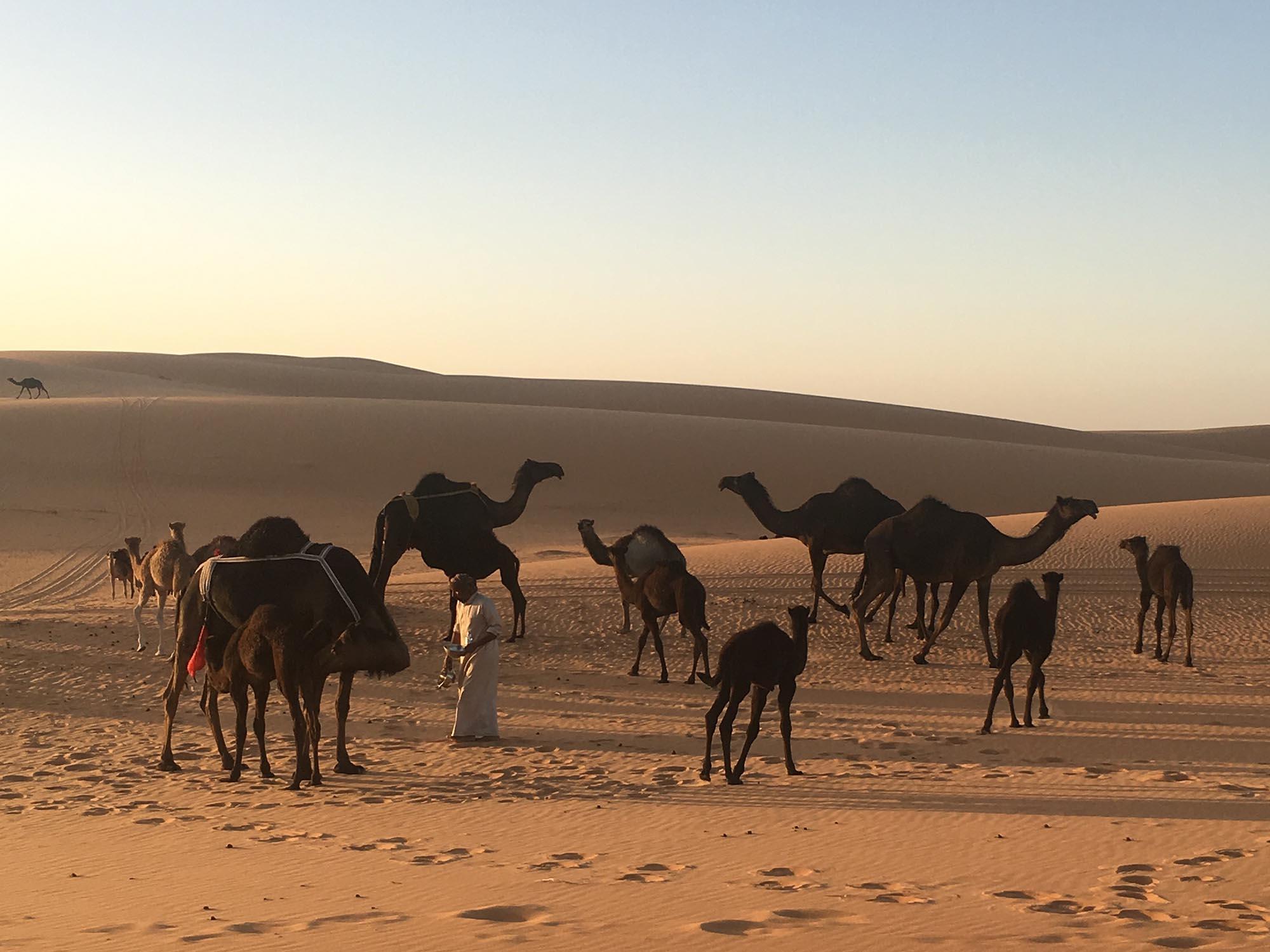 Huwelijksreis Oman & Dubai