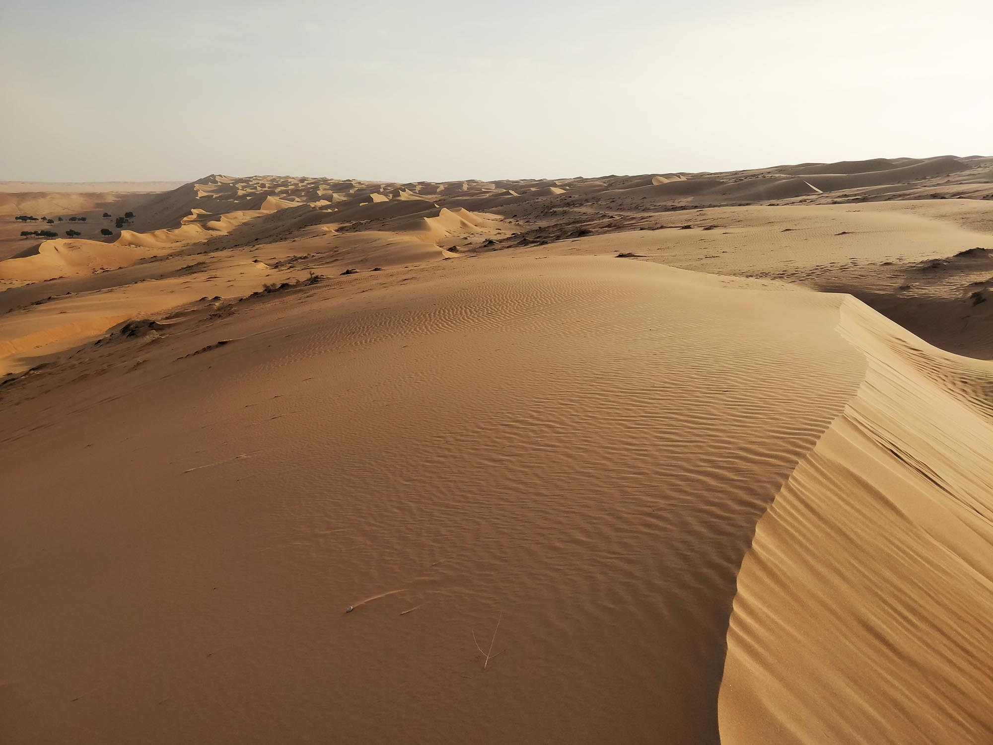Wahabi Sands