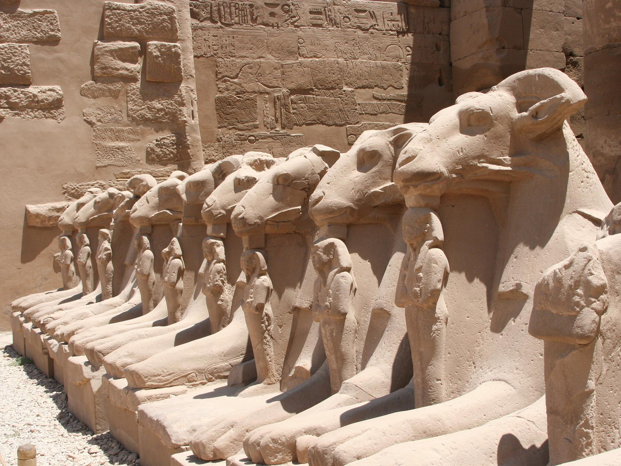Egypte Luxor Rij Van Sfinxen
