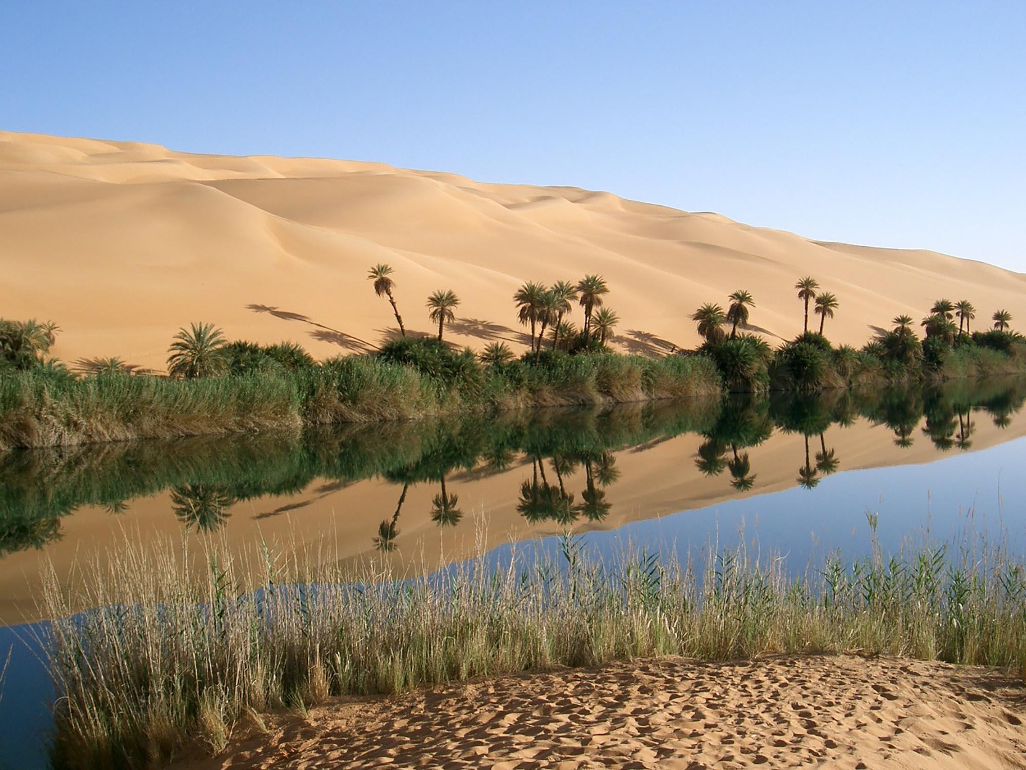 Piramides, woestijnen en oases van Egypte