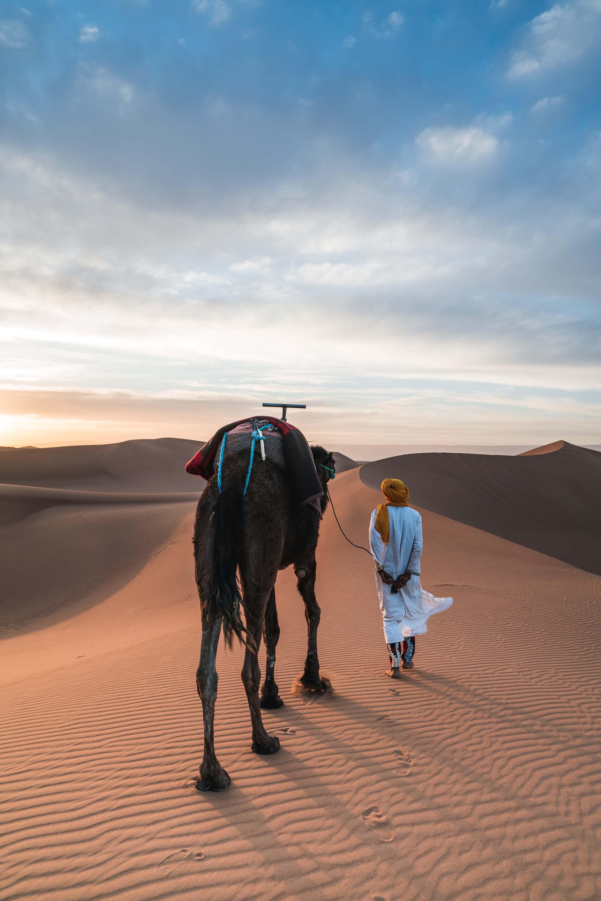 Koningssteden & Woestijn van Marokko